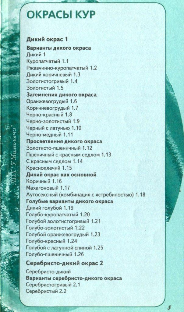 Голошейные куры - Страница 16 11119