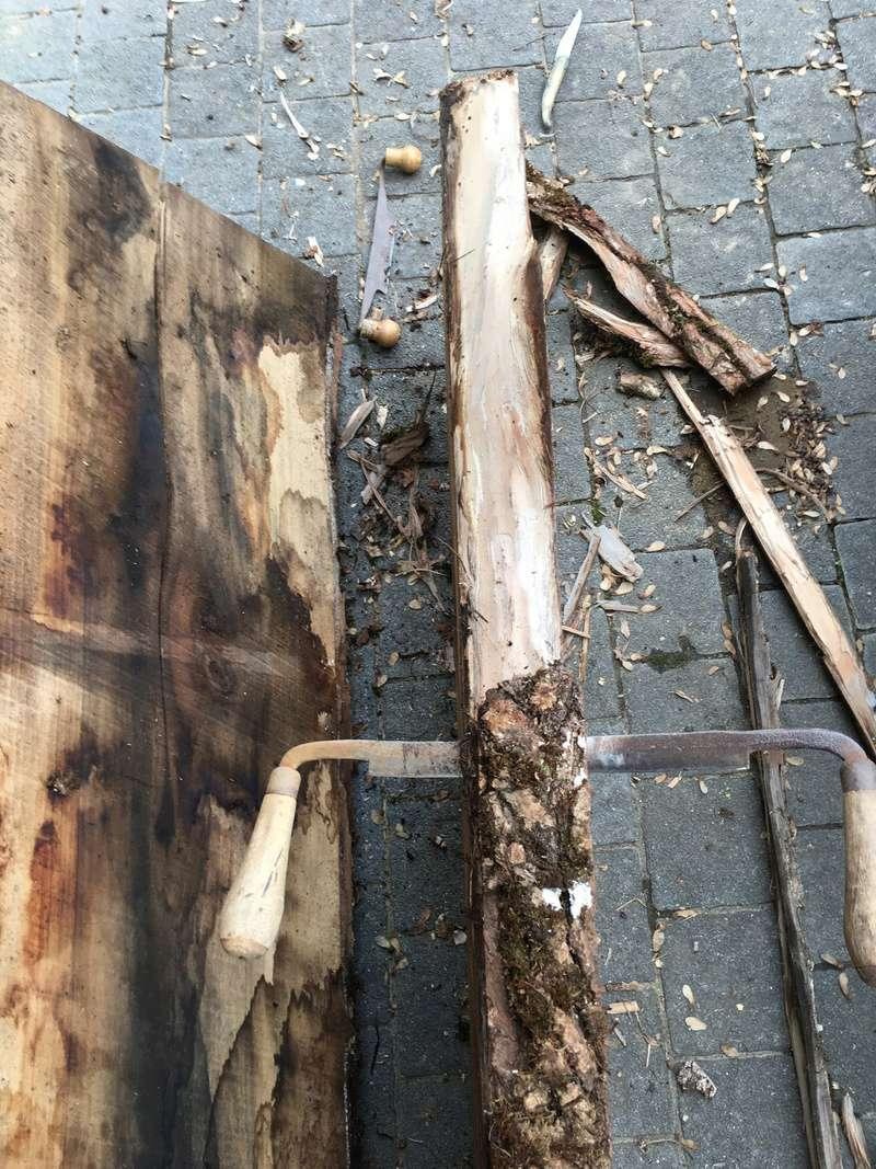 quelle est cette essence de bois - Page 7 Img_0135