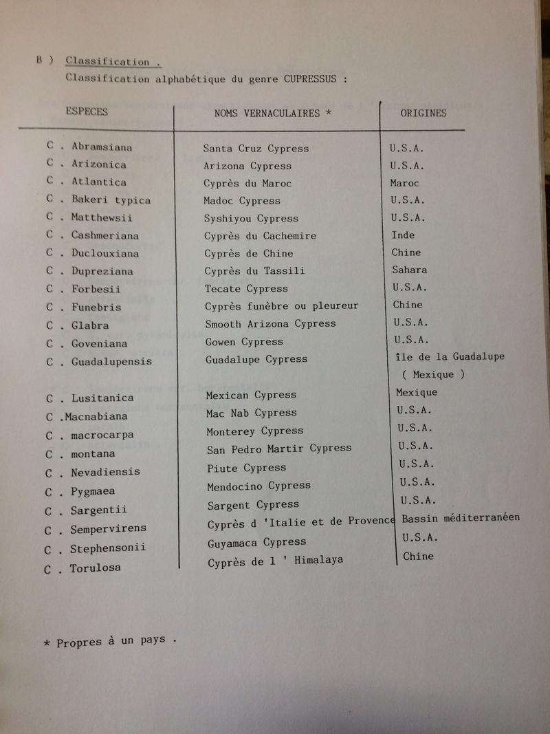 [Identification de bois] Mais qu'est-ce que cèdre ? - Page 2 Img_5020