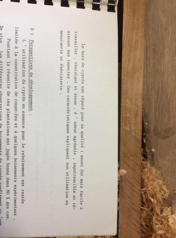 [Identification de bois] Mais qu'est-ce que cèdre ? - Page 2 Img_5021