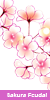 Sakura Feudal —Confirmación— 50x10010