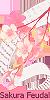 Sakura Feudal —Confirmación— 50x10011
