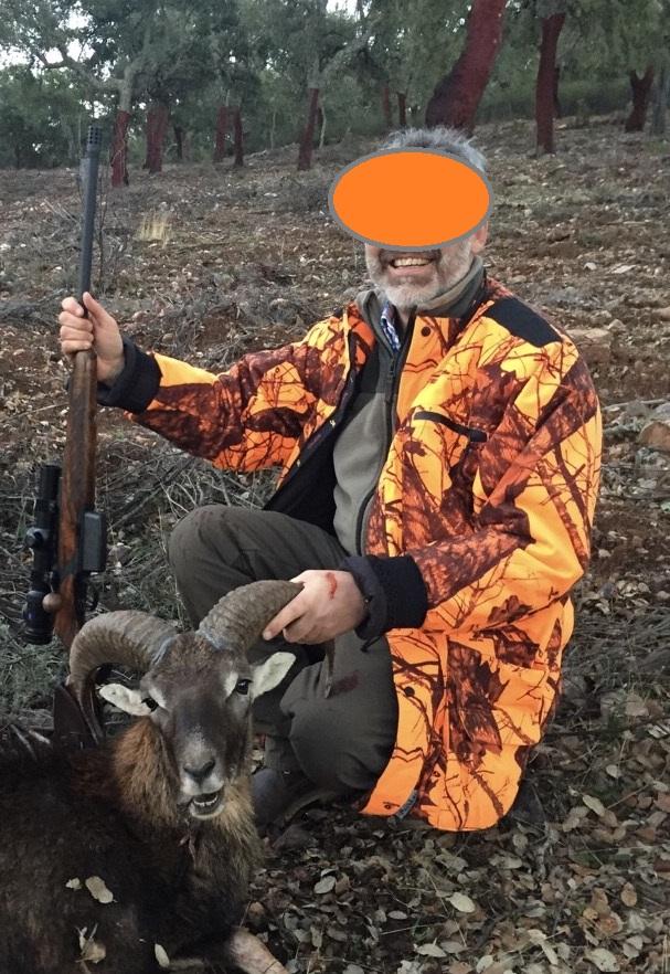 Mouflon à l'approche Mouflo10