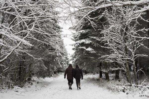 Météo: chutes de neige et températures glaciales en fin de semaine Bby9iv10