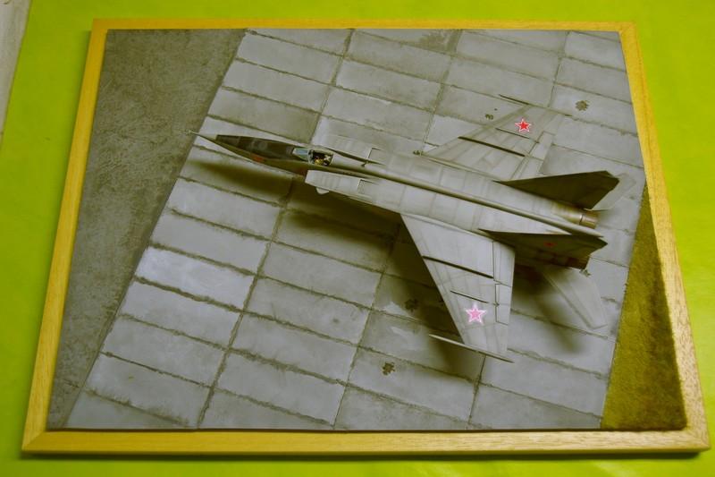 MIG 25 R  (Condor+Armory ) - Page 6 004_8010