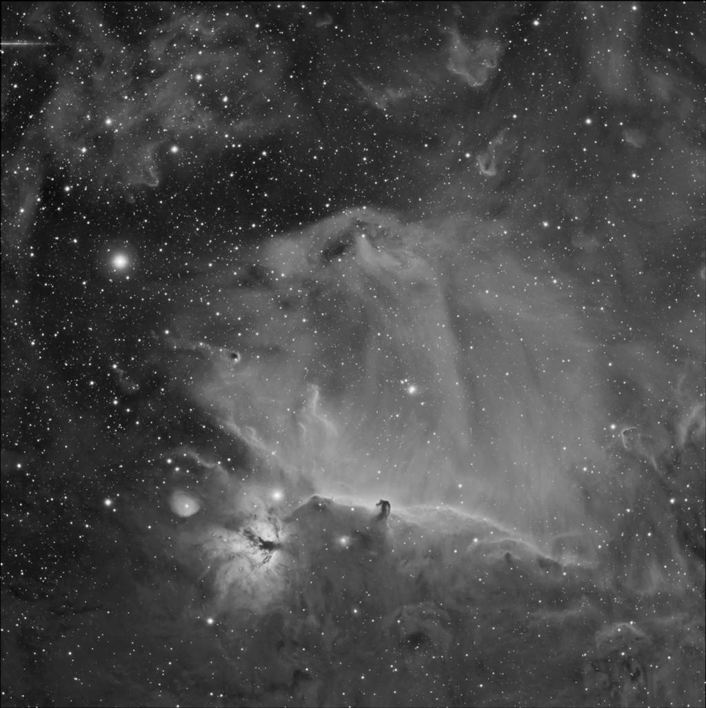 IC434 - grand champ en Ha Ic434_10
