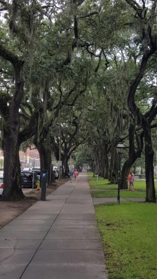 Tampa - Savannah - St Augustine  - Orlando - Aout 2016 20160829