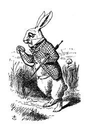 Alice au pays des merveilles et De l'Autre Côté du miroir (Lewis Carroll, 1865, 1871) Alice110