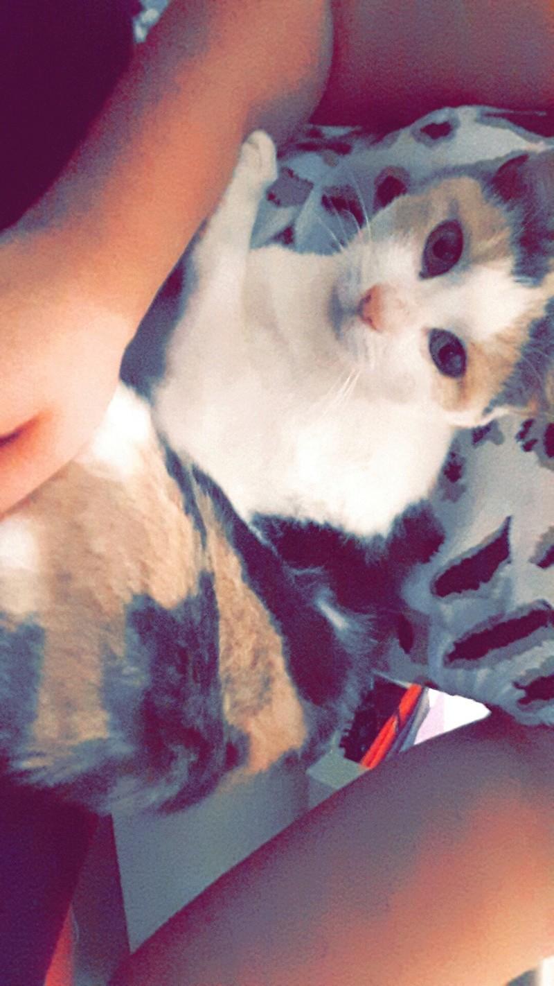 Ruby ex Rika, née en décembre 2015 Snapch16