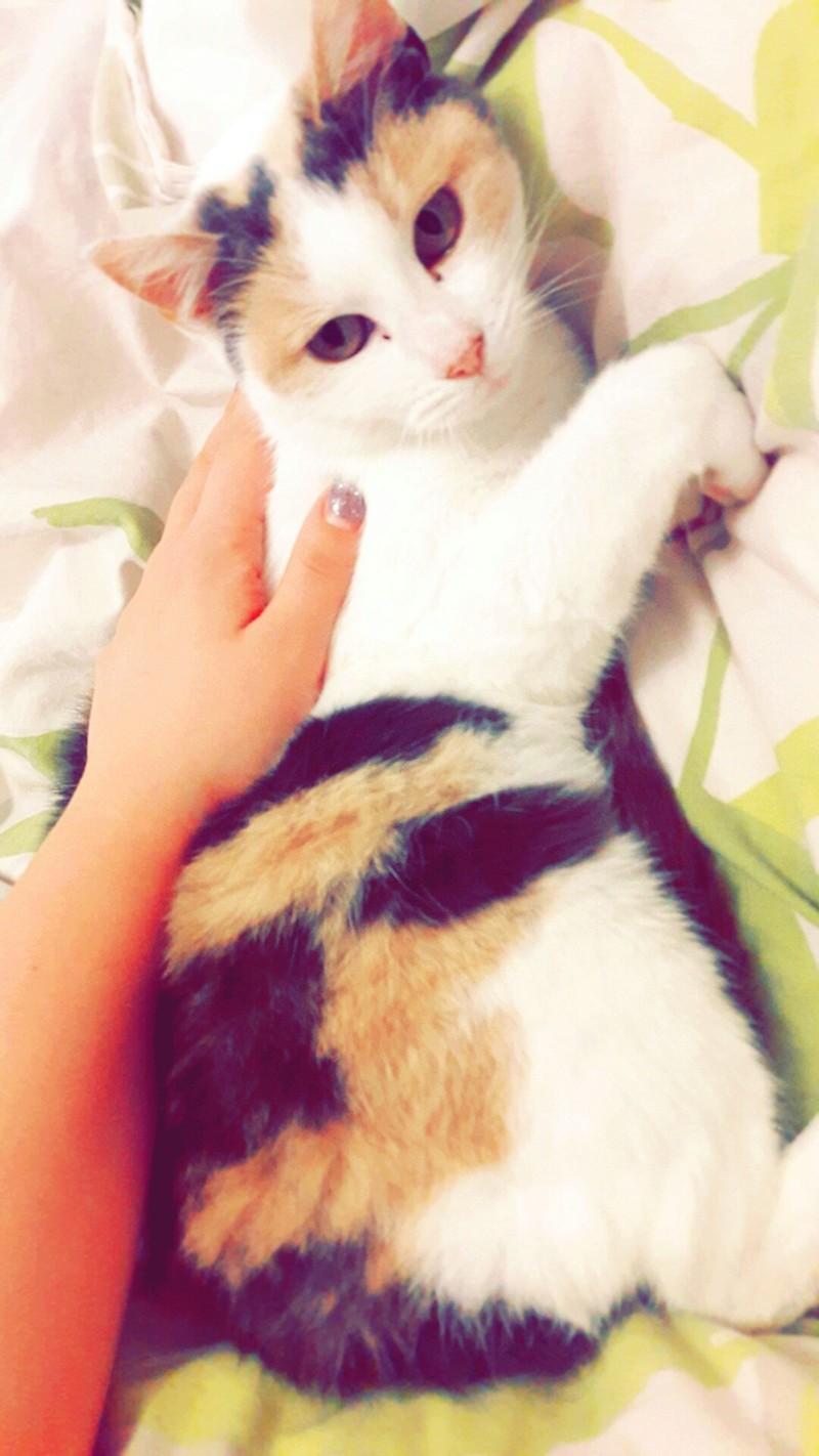 Ruby ex Rika, née en décembre 2015 Snapch20