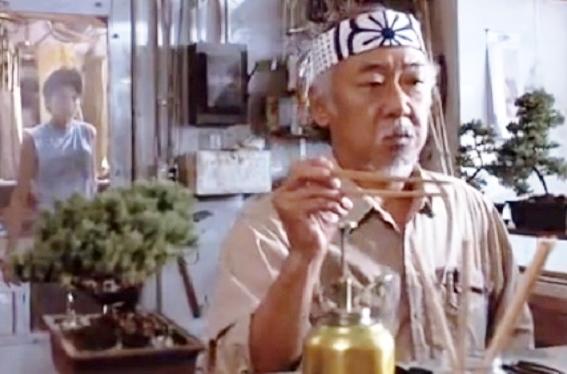 The real Bonsai World 03-kar11