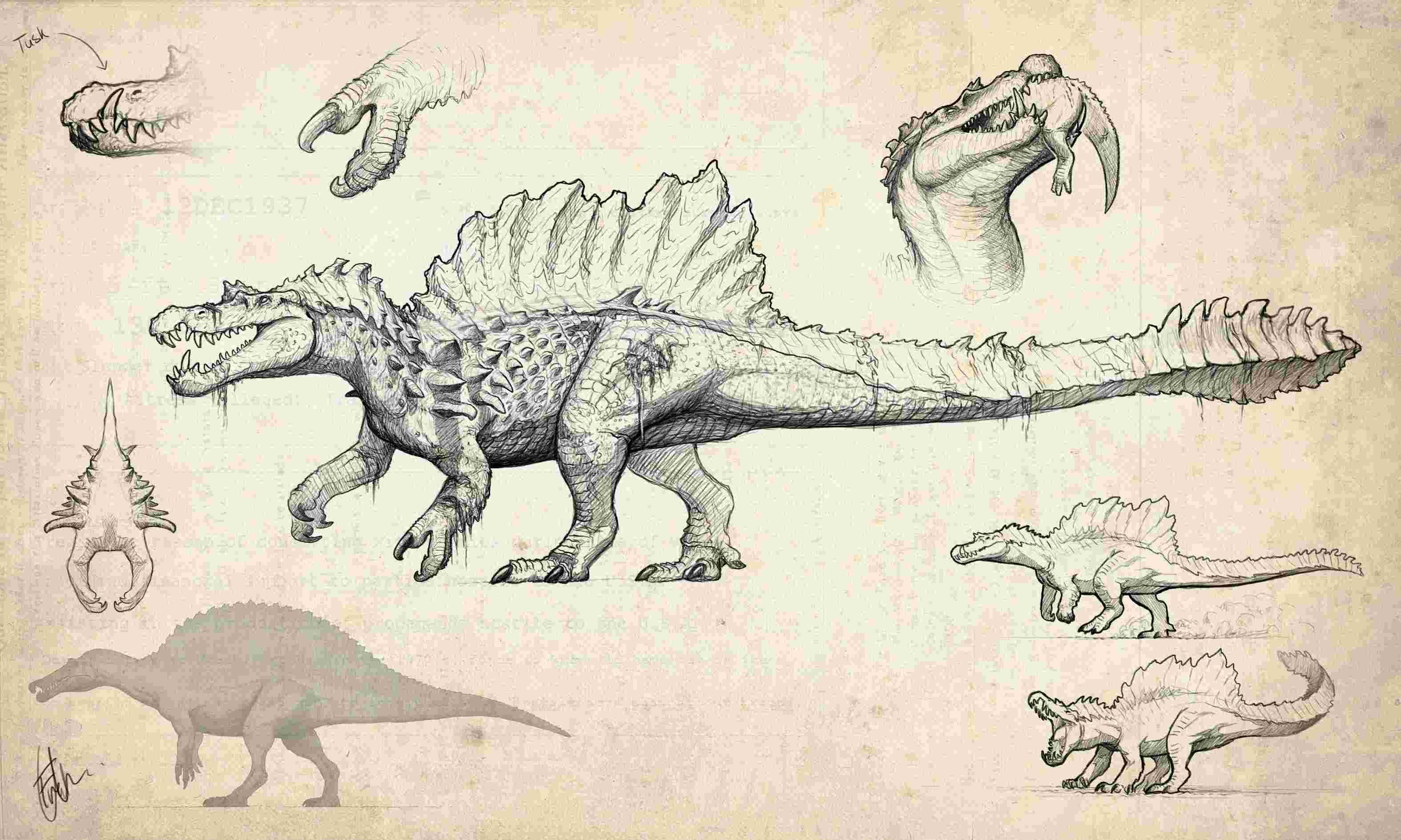 Hyperendocrin Spinosaurus Hypo-s10