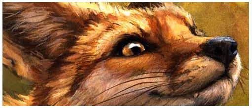 A fox in the area - FINI 1110