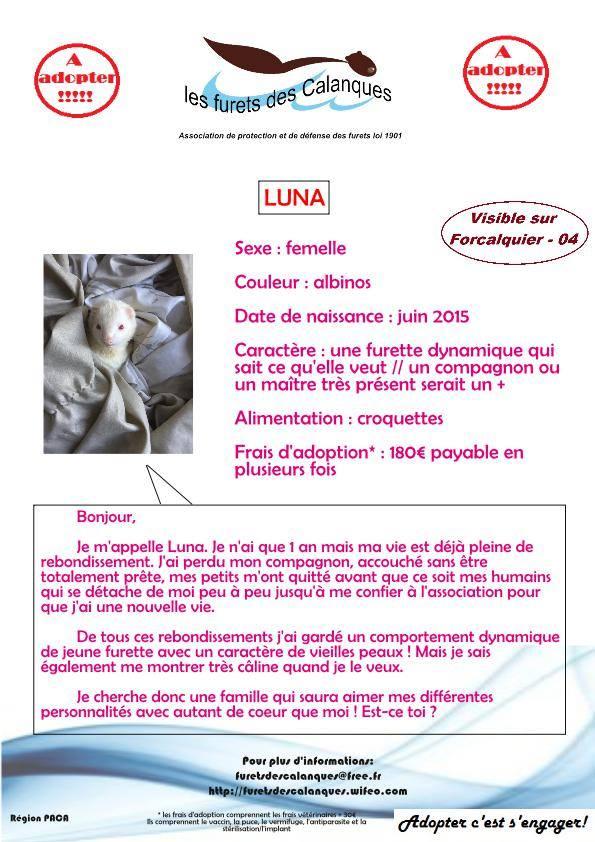 Luna 15032712