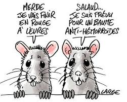 HUMOUR - blagues - Page 5 Index_10