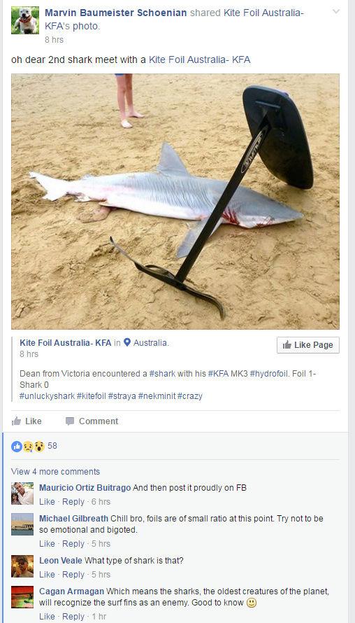 le foil pecheur reste a inventer Shark_10