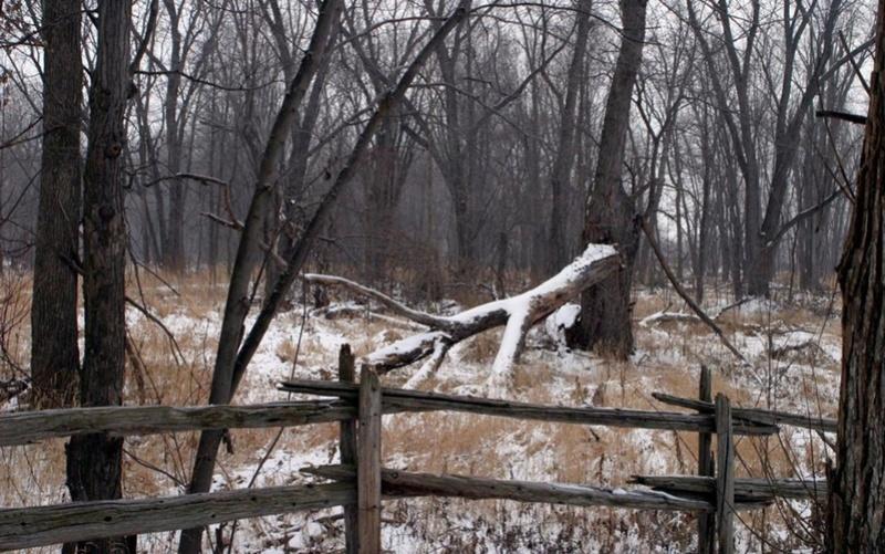 Zimski pejzaži-Winter landscapes - Page 11 11545410