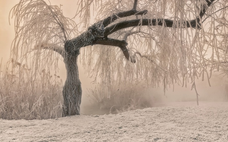 Zimski pejzaži-Winter landscapes - Page 11 Dsc50810