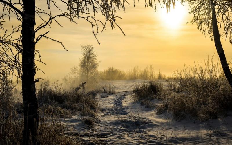 Zimski pejzaži-Winter landscapes - Page 11 Lime-w11