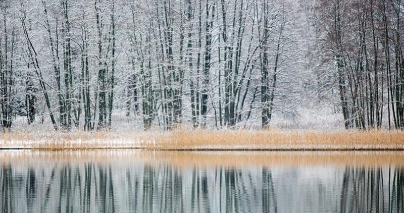 Zimski pejzaži-Winter landscapes - Page 11 Scree273