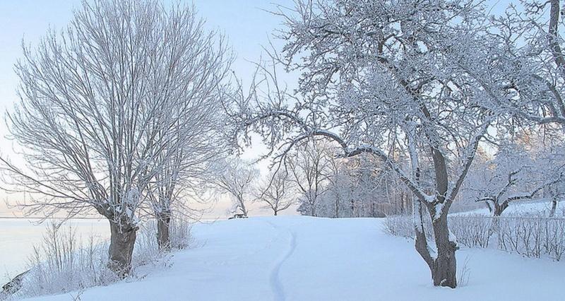 Zimski pejzaži-Winter landscapes - Page 11 Scree275