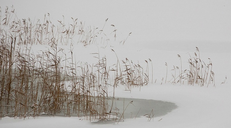 Zimski pejzaži-Winter landscapes - Page 11 Scree278