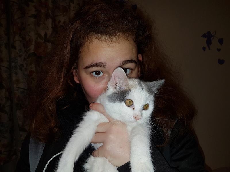 KYTTY - chat femelle, née septembre 2016 - CHEZ LUMINITA - En FA chez Abysse (dpt92) - ADOPTEE PAR SANDRA (depart94) 20161211