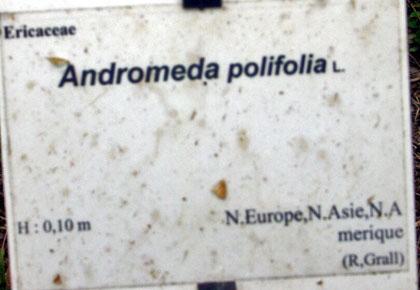 (29) Arboretum de Keracoual - Henvic  Androm12