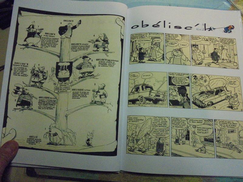 asterix échiquier - Page 38 Dsc02558