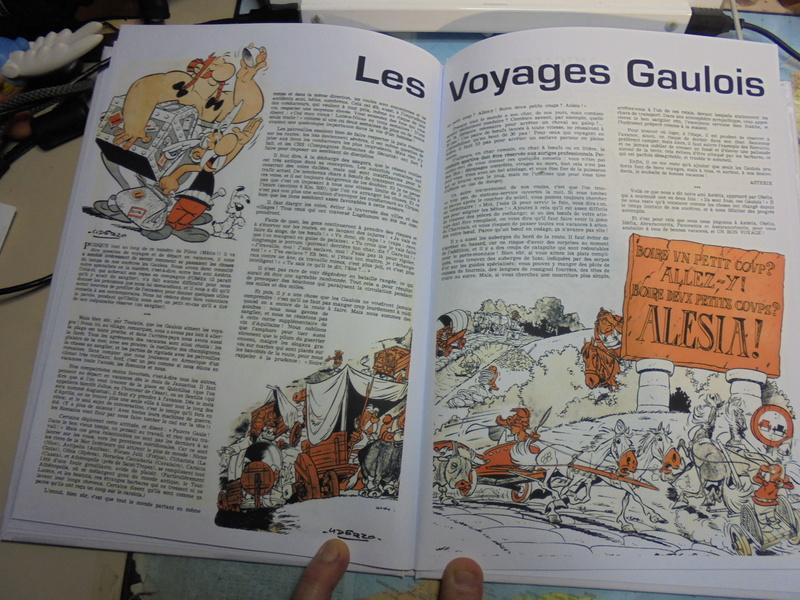 asterix échiquier - Page 38 Dsc02573