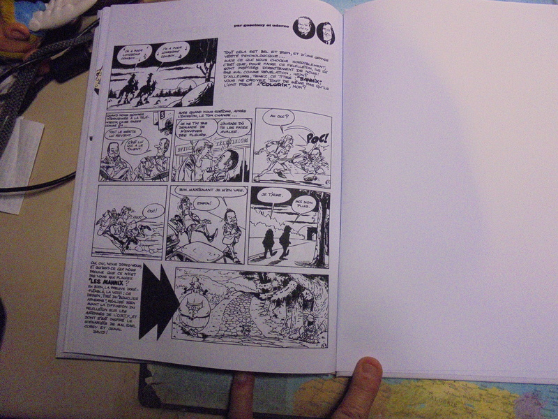 asterix échiquier - Page 38 Dsc02577