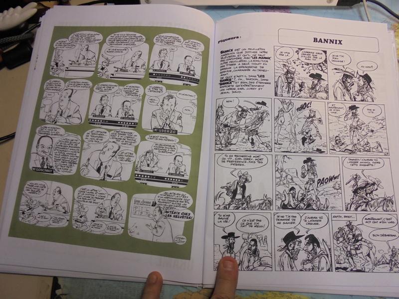 asterix échiquier - Page 38 Dsc02578