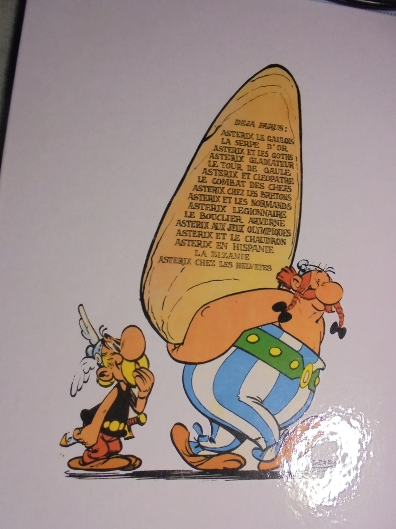 asterix échiquier - Page 38 Dsc02580