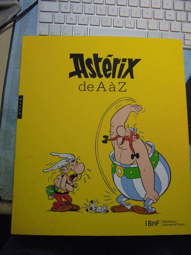 asterix échiquier - Page 40 Dsc02619