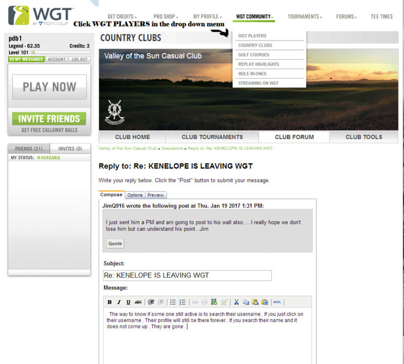 HOW TO PERFORM A PLAYER SEARCH IN WGT Wgt_pl11