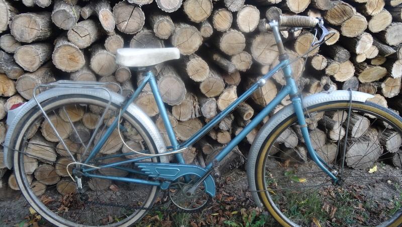 velo dame bleu Dsc09916