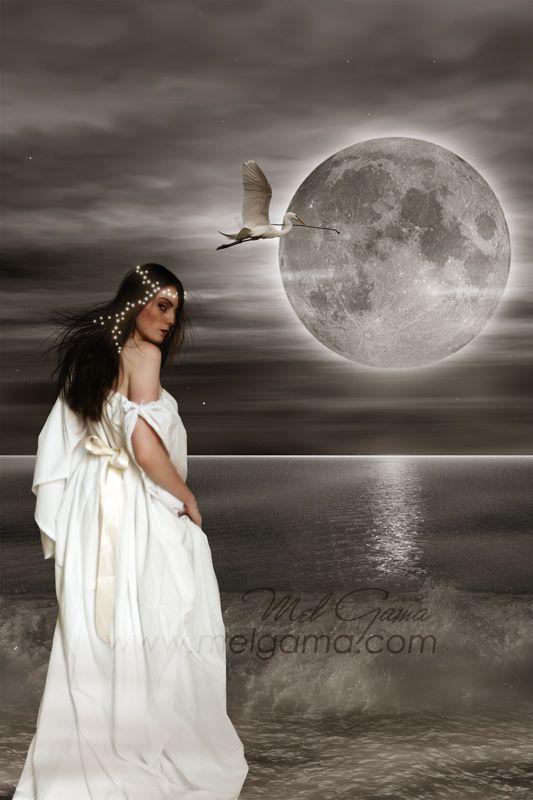 Au clair de Lune - Page 3 D71ff910