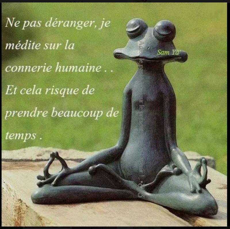 Le bonjour d'Aurae Screen26