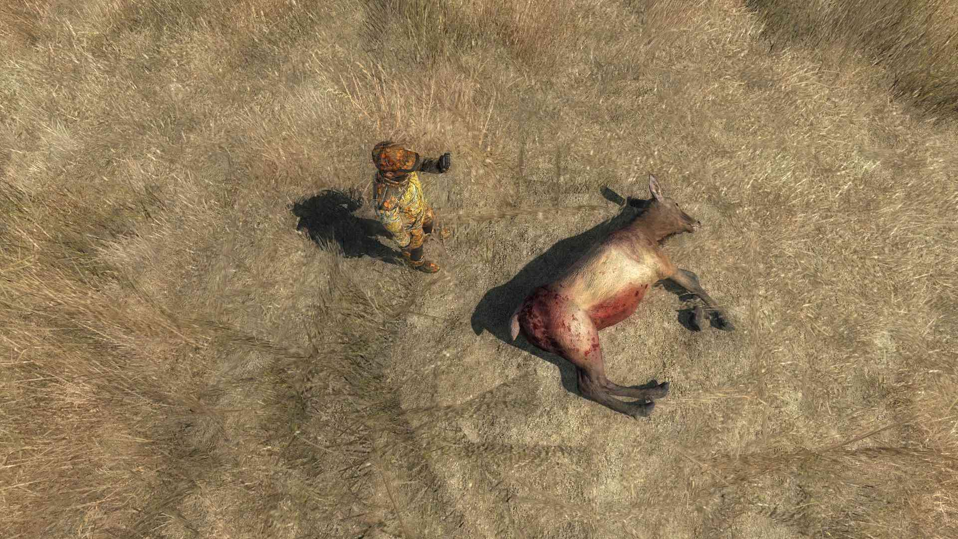 Trophés the hunter - Page 3 2016-114