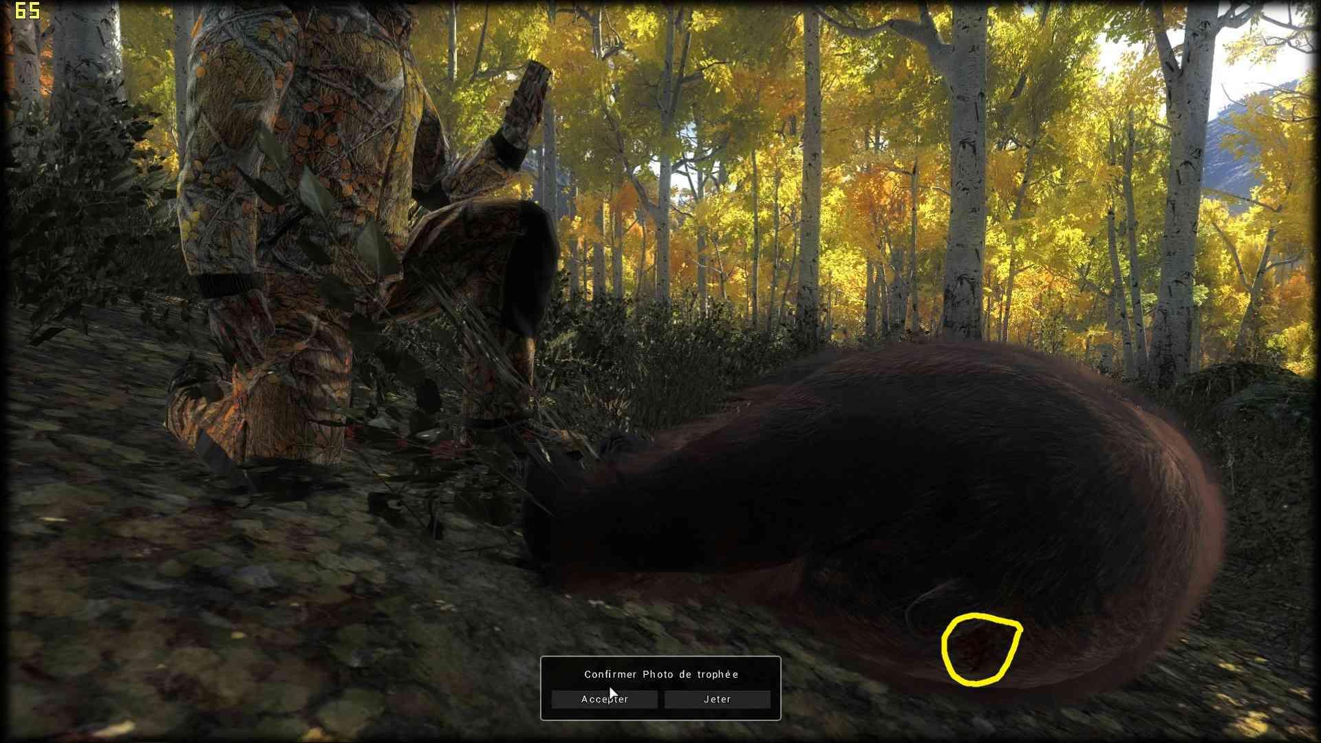 Trophés the hunter - Page 3 Thehun13