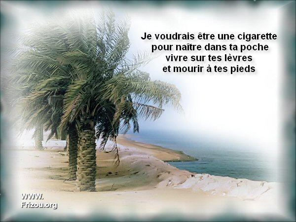 citation du jour/celebres et images de colette - Page 3 Je_vou10