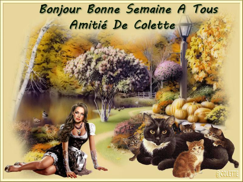 pause detente bonjour a bonsoir - Page 2 Journe10