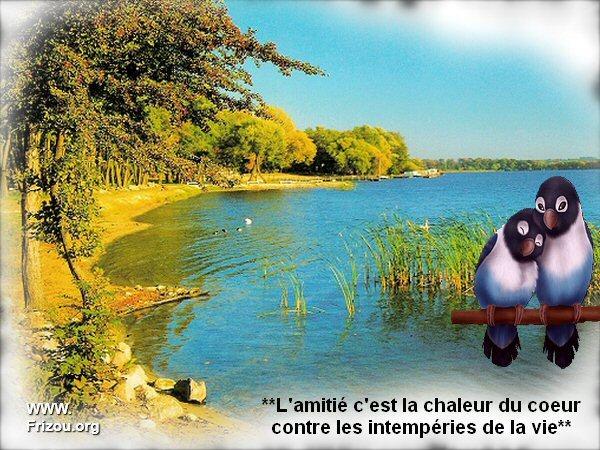 citation du jour/celebres et images de colette - Page 3 L_amit10