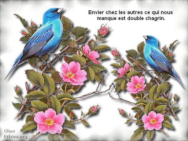 citation du jour/celebres et images de colette - Page 4 Pensye21