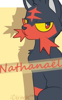 Service de commandes graphiques - Page 4 Nathan11