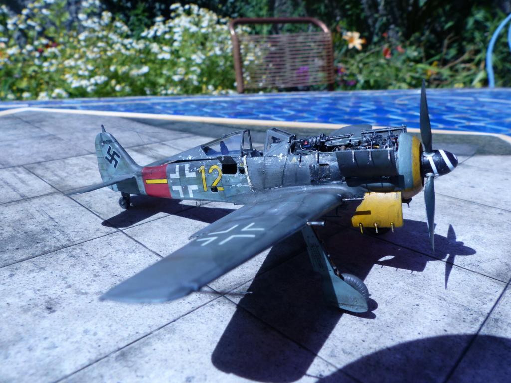 EDUARD FW 190 A8/R2 + EDUARD BRASSIN /MOTEUR P1070335