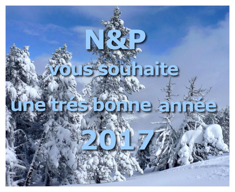 Bonne fin d'année et bonne nouvelle 2017 Ba11