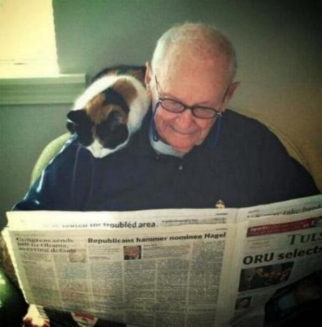 Les chatons tout mignon Tri_1310