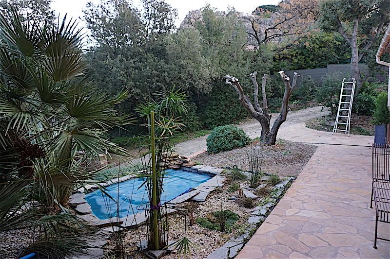 Bassin extérieur avec voiles de chine - Page 8 Dsc05424