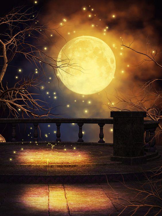 Au clair de Lune - Page 3 57e43510